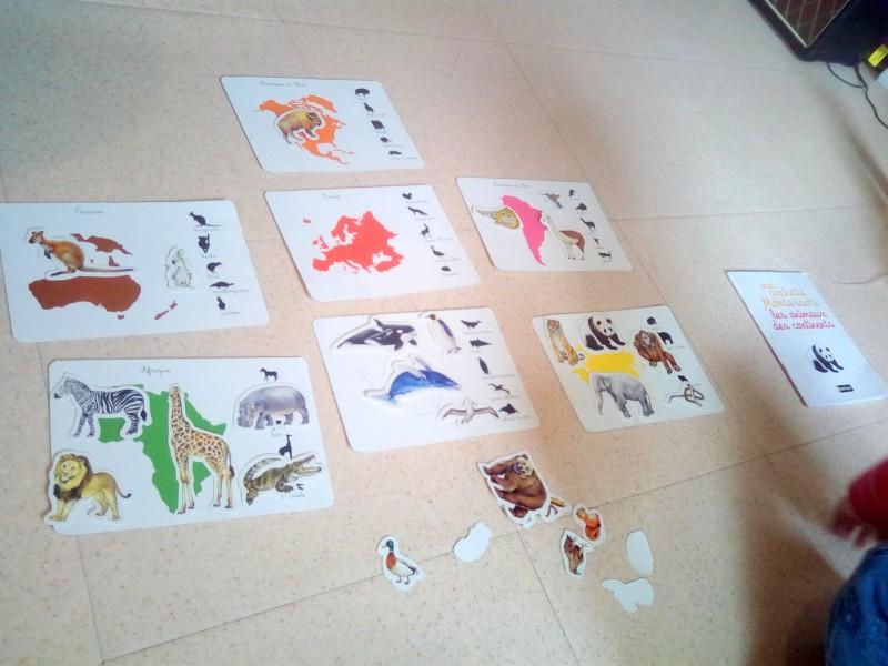 pochette montessori animaux continents