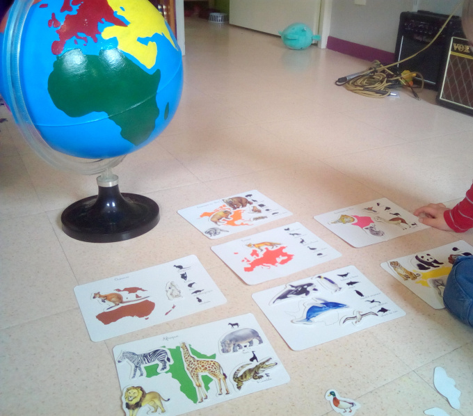 animaux continents montessori