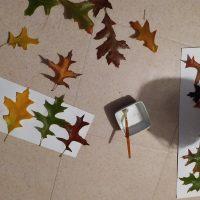 automne activités